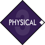 Diamond Principles Physical Logo